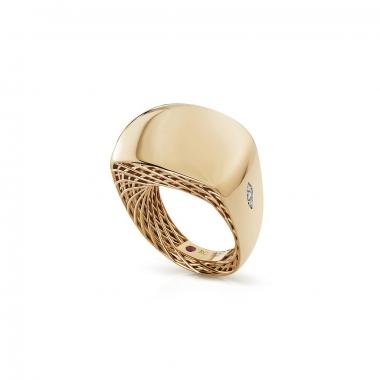 golden-gate-anillo