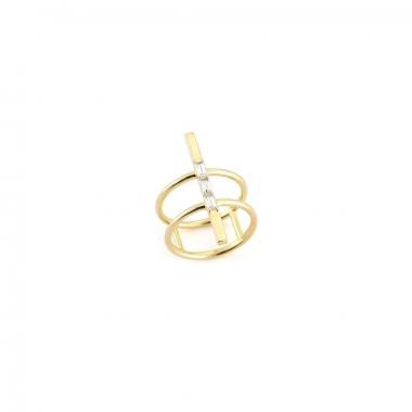 anillo-anillo